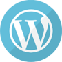 Wordpress Theme & Plugins Detector
